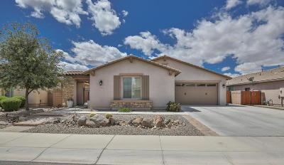 Gilbert Single Family Home For Sale: 2487 E Aris Drive