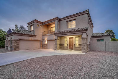 Tempe Single Family Home For Sale: 702 E Carver Road