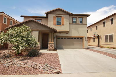 Tempe Single Family Home For Sale: 9120 S Roberts Road