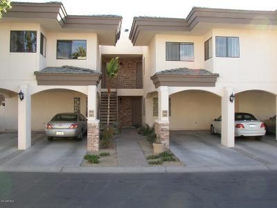 Phoenix Apartment For Sale: 3235 E Camelback Road #102