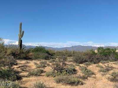 Scottsdale Residential Lots & Land For Sale: 16200 E Lone Mountain Road