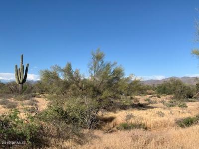 Scottsdale Residential Lots & Land For Sale: 31600 N 162nd Street
