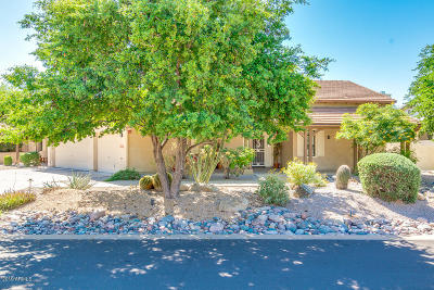 Scottsdale Single Family Home For Sale: 22829 N 91st Way