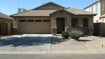 San Tan Valley Single Family Home For Sale: 4239 E Rock Drive