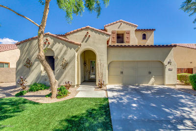 Chandler Single Family Home For Sale: 4201 S Granite Drive