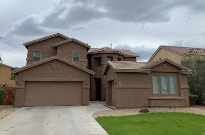 Laveen Single Family Home For Sale: 6813 W Burgess Lane