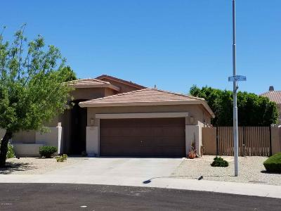 Phoenix Single Family Home For Sale: 16633 S 16th Drive