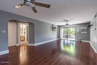 Phoenix Apartment For Sale: 3825 E Camelback Road #178