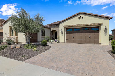 San Tan Valley Single Family Home For Sale: 1668 E Verde Boulevard