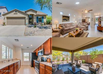Cave Creek AZ Single Family Home For Sale: $349,900