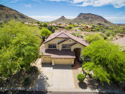Scottsdale Single Family Home For Sale: 13857 E Kalil Drive