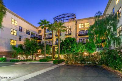 Phoenix Rental For Rent: 914 E Osborn Road #216