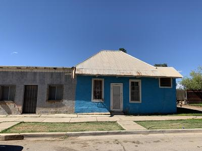 Douglas Single Family Home For Sale: 830 International Avenue