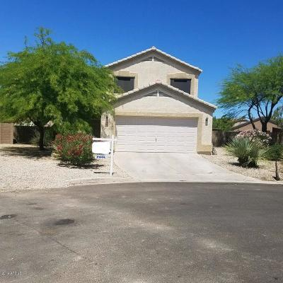 Florence Single Family Home For Sale: 23808 N Tayrien Lane