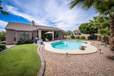 Phoenix Single Family Home For Sale: 16612 S 11th Avenue