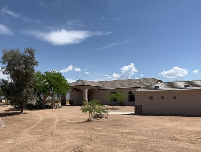 Mesa Single Family Home For Sale: 23115 E Ray Road