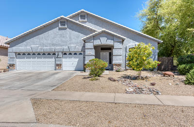 Phoenix Single Family Home For Sale: 928 E Beautiful Lane