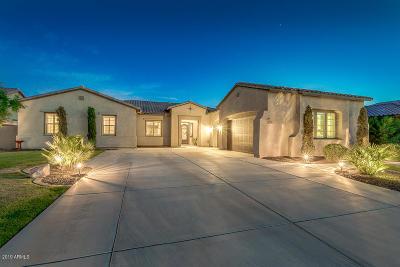 San Tan Valley Single Family Home For Sale: 1291 E Via Sicilia