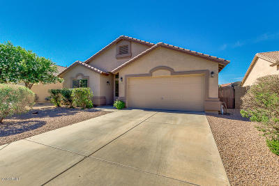 Maricopa Single Family Home For Sale: 43233 W Anne Lane