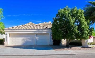 Chandler Single Family Home For Sale: 3150 W Drake Street