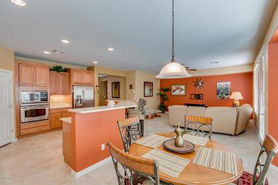 San Tan Valley Rental For Rent: 31015 N Orange Blossom Circle