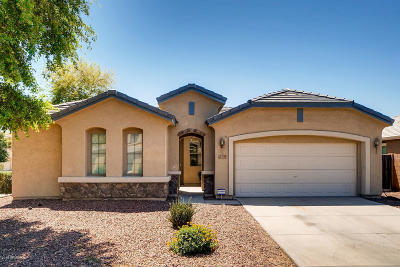 Avondale Single Family Home For Sale: 12159 W Chase Lane