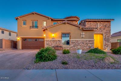 Gilbert Single Family Home For Sale: 2245 E Tomahawk Drive