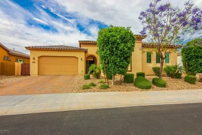 Goodyear Single Family Home For Sale: 15710 W Wilshire Drive