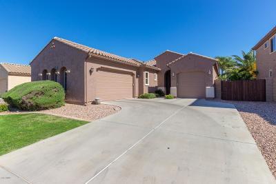 Chandler Single Family Home For Sale: 4854 E Palm Beach Drive