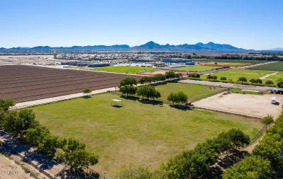 San Tan Valley Residential Lots & Land For Sale: 38092 N Sangria Lane