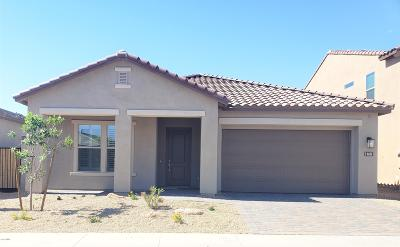 Phoenix Single Family Home For Sale: 6625 E Morningside Drive