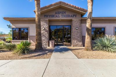 Mesa Commercial Lease For Lease: 1345 E McKellips Road #101
