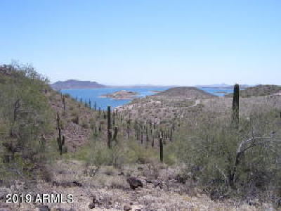 Residential Lots & Land For Sale: N Castle Hot Spring Road