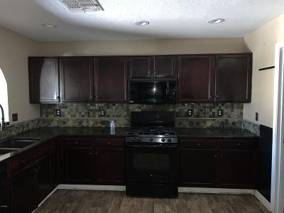 San Tan Valley Single Family Home UCB (Under Contract-Backups): 1036 E Denim Trail