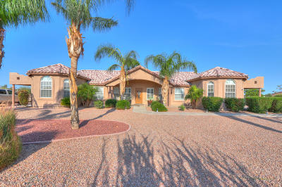 Casa Grande Single Family Home For Sale: 9777 N Chemehlevi Drive