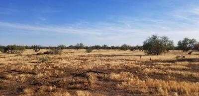 Gold Canyon Residential Lots & Land For Sale: S Us-60 Highway