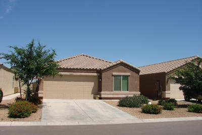 Queen Creek, San Tan Valley Single Family Home For Sale: 28587 N Moonstone Way
