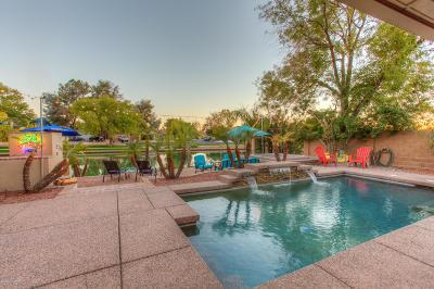 Dobson Ranch, Dobson Ranch Unit 3 Per M Rental For Rent: 1756 S Shore Circle