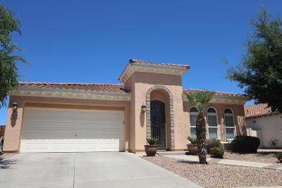 Chandler Single Family Home For Sale: 2424 E Desert Broom Place