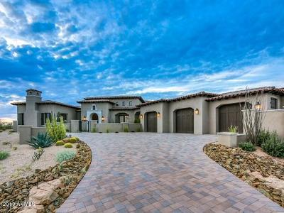 Single Family Home For Sale: 36532 N 100th Way