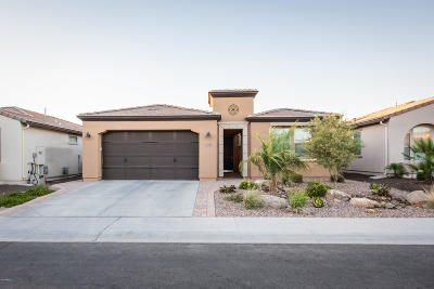 San Tan Valley Single Family Home For Sale: 128 E Atacama Lane
