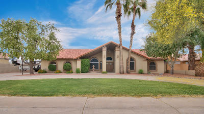 Chandler Single Family Home For Sale: 9 S Galaxy Drive
