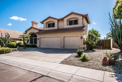 Tempe Single Family Home UCB (Under Contract-Backups): 9489 S Shafer Drive
