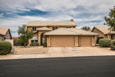 Cave Creek Single Family Home For Sale: 4214 E Rancho Tierra Drive