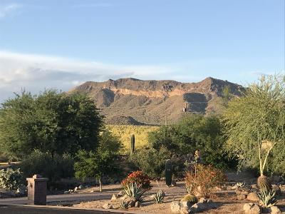 Mesa Residential Lots & Land For Sale: 9551 E Julep Circle
