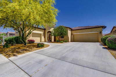 Goodyear Single Family Home For Sale: 17523 W Liberty Lane