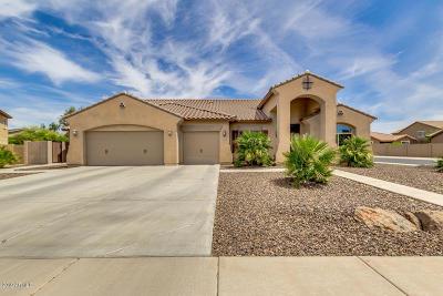 Mesa Single Family Home For Sale: 5013 S Tambor