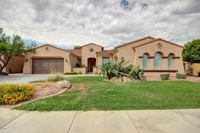 Chandler Single Family Home For Sale: 5326 S Fairchild Lane