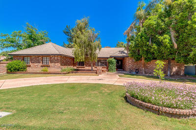 Gilbert Single Family Home For Sale: 32 N Riata Street