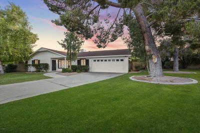 Paradise Valley Single Family Home For Sale: 6901 E Orange Blossom Drive